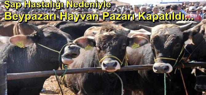 Şap Hastalığı Nedeniyle Beypazarı Hayvan Pazarı Kapatıldı...