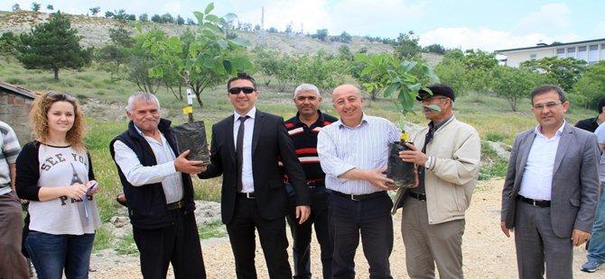 Beypazarı Belediyesinin Üreticiye Destekleri Devam Ediyor
