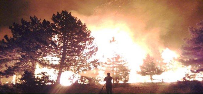 Nallıhan'da Orman Yangını Büyüyor