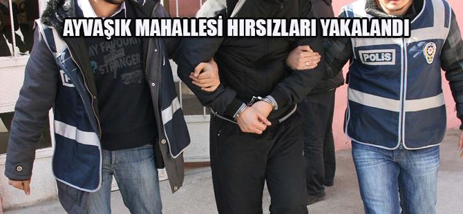 AYVAŞIK MAHALLESİ HIRSIZLARI YAKALANDI