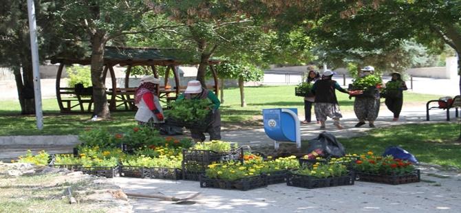 Beypazarı Belediyesi Çevre Düzenleme ve Peyzaj Çalışmaları Devam Ediyor