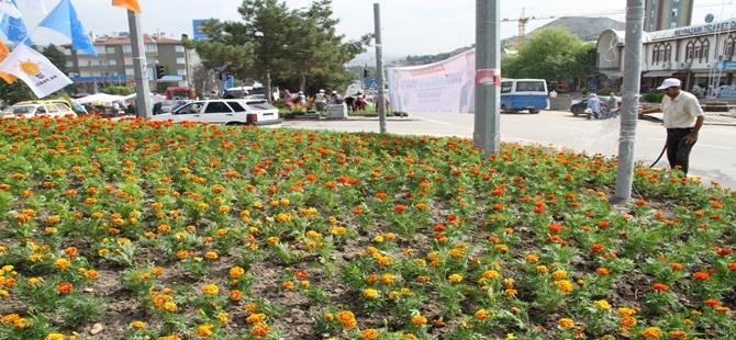 Alparslan Türkeş Bulvarı'nda Refüj Çiçeklendirme İşleri Yapılıyor