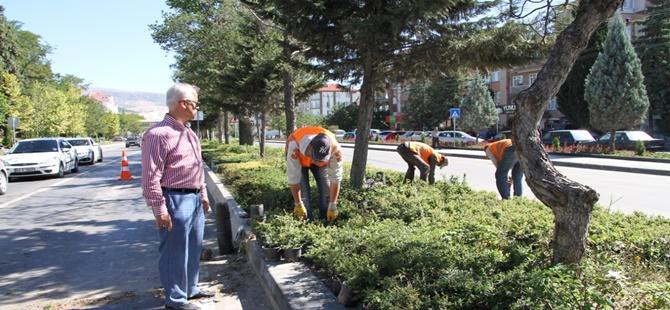 Beypazarı Belediyesi  Park Bahçeler ve Mezarlıklarda Bayram Temizliği Yapıyor