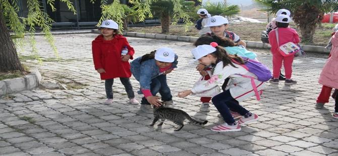 Beypazarılı Miniklerden Hayvan Bakımevine Ziyaret