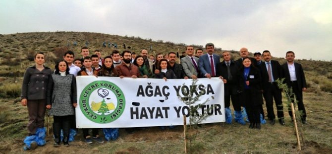 Beypazarı Belediyesi ve Çevkor işbirliği ile 2000 teras sediri toprakla buluştu