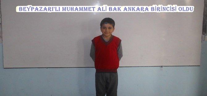 Beypazarı Faruk Kefelioğlu Ortaokulu 5/A sınıfı öğrencilerinden Muhammed Ali BAK