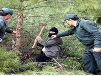 Beypazarı Ormanlarında Kaçak Kesim Denetimi