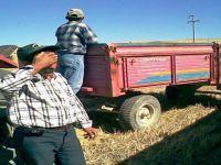 Beypazarılı Üreticileri  Haziran Yağışları Zora Soktu