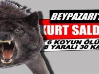 Beypazarı'nda Kurtlar Koyun Sürüsüne Saldırdı 6'sını Öldürdü,8'sini yaraladı, 30 u Kayıp