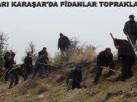 BEYPAZARI KARAŞAR'DA FİDANLAR TOPRAKLA BULUŞTU