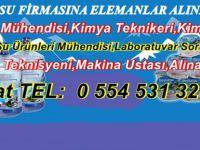 BEYPAZARI '' BEYKARSU ''  FİRMASINA ELEMANLAR ALINACAKTIR