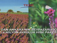 TKDK'DAN ANKARA'NIN BEYPAZARI İLÇESİNE 1,6 MİLYON AVROLUK HİBE PAKETİ