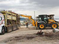 Beypazarı'nda Sosyal Yardımlar İç Isıtıyor