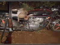 Beypazarı'nda Motorsikletle Gece Avı Yapan Kişi Yakalandı