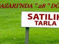 Beypazarı'nda Satılık 28 Dönüm Tarla
